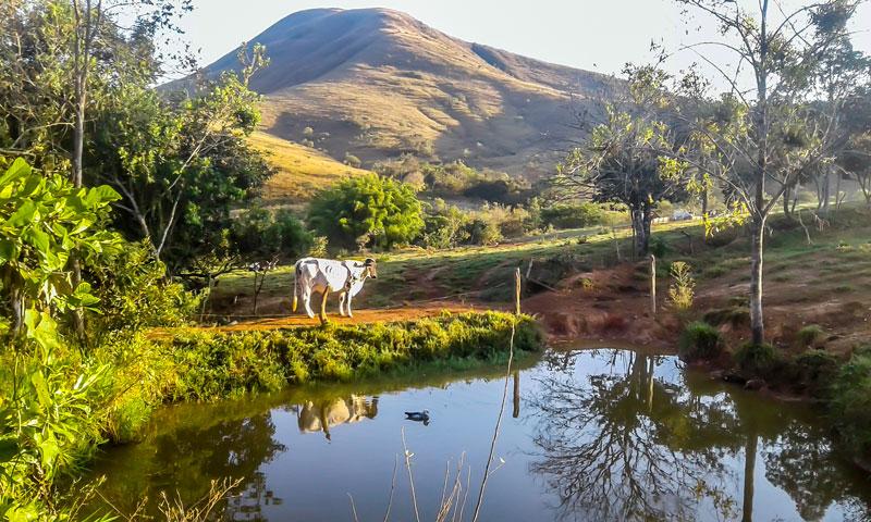 Fazenda Água Limpa onde é produzido o Queijo Dinho, na Serra da Canastra. Crédito: Igor Messias